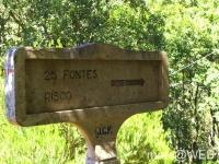 25_Fontes__7_