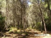 Algarve (22).JPG