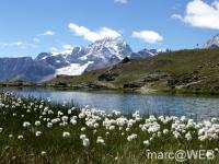 Matterhorn__13_