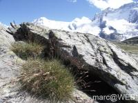 Matterhorn__14_