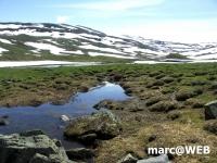 Norwegen (6).JPG