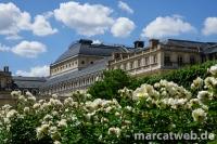 Paris-DSC01079