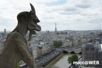 Paris (17)