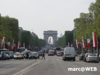 Paris (51)