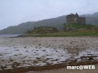 Schottland (25)