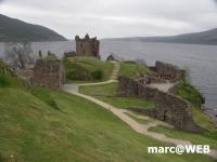 Schottland (5)
