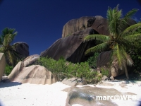 Seychellen (60)