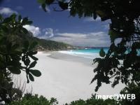 Seychellen (69).JPG