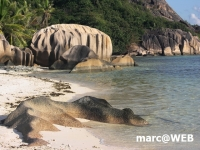 Seychellen (77)