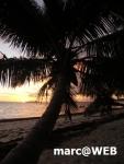 Seychellen (8).JPG