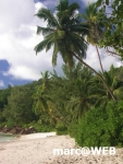 Seychellen (81)