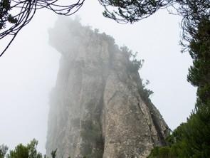 Roque de Anambra