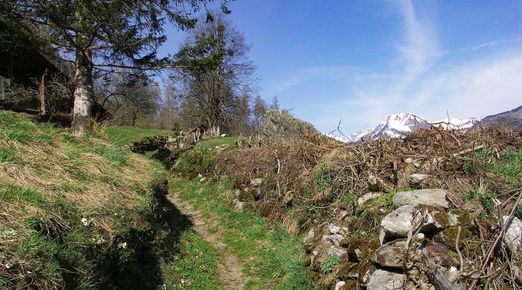 Reichenbachfall