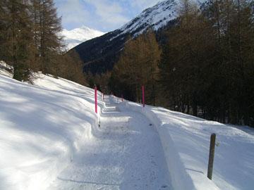 Winterwanderweg in Sankt Moritz