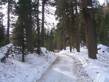 Winterwanderweg in St. Moritz