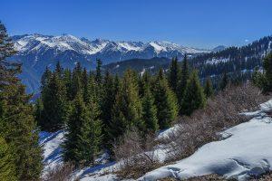 Winterwanderung auf dem Panorama Genussweg in Serfaus-Fiss-Ladis