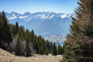 Auf dem Fisser Höhenweg zur Frommes Alpe in Serfaus-Fiss-Ladis