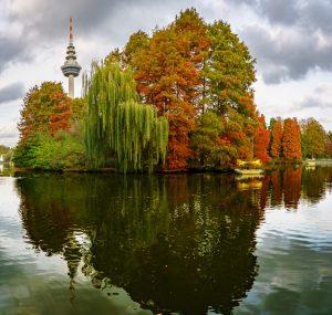 Den Herbst fotografieren in Mannheim