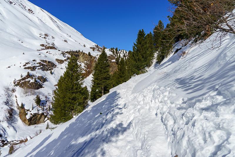 Winterwanderweg durch den Zirbenwald