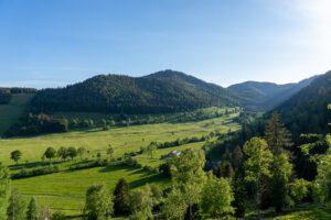 Wanderung auf dem Menzenschwander Geißenpfad im Schwarzwald