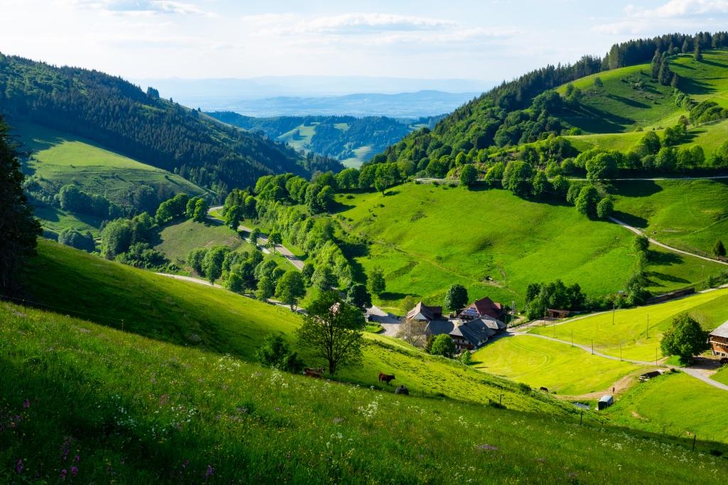 Hochwiesen im Schwarzwald